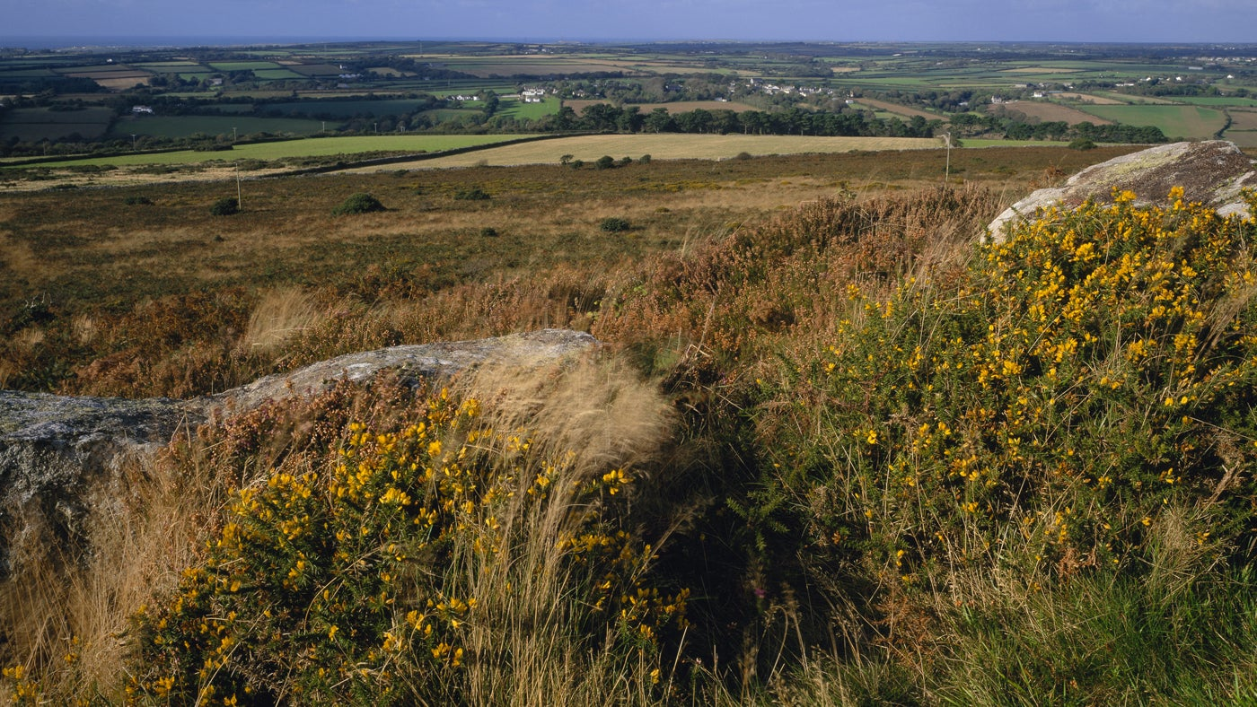 Large rocks and bracken on Godolphin Hill, looking north