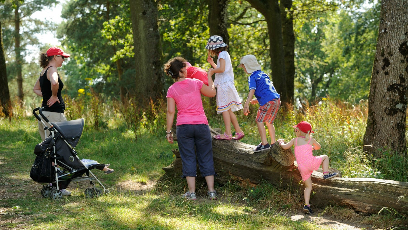 Family group climbing on tree trunk