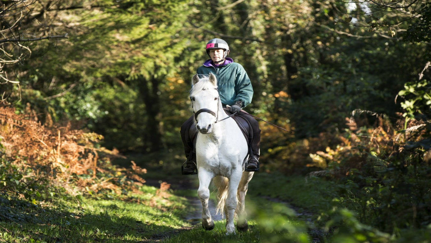 Woman riding her horse on the Hoof Trail at Castle Ward