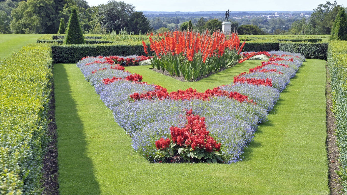 Planting the Parterre at Cliveden | National Trust