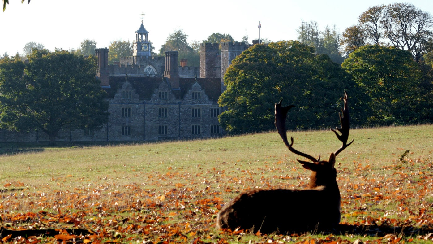 Autumn glow at Knole