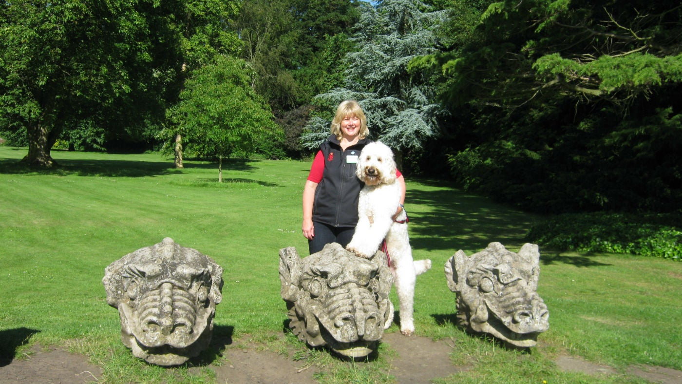 General Manager and dog by the dragon's heads at Wallington, Northumberland