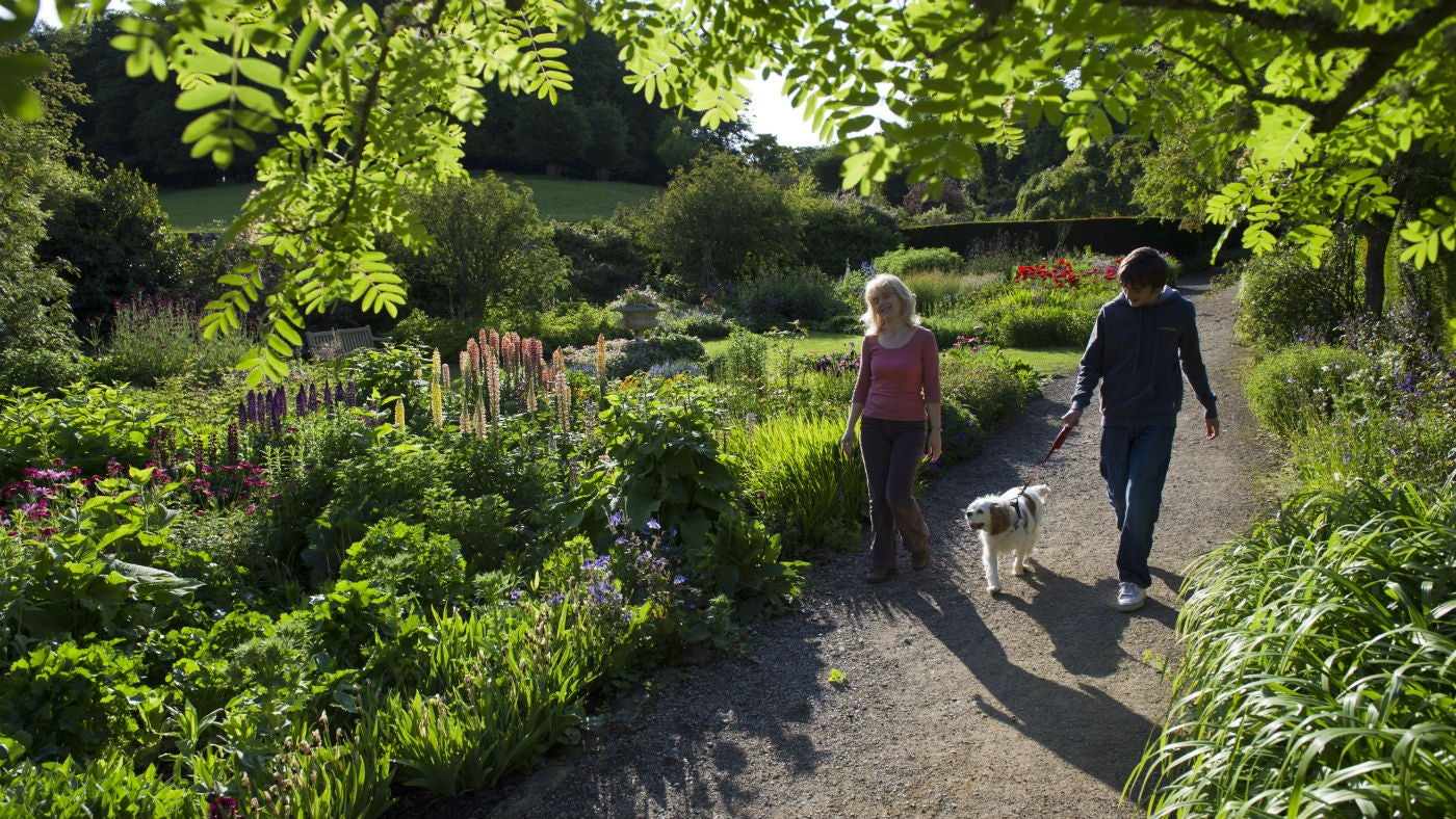 Two visitors walking a dog through the garden at Wallington, Northumberland
