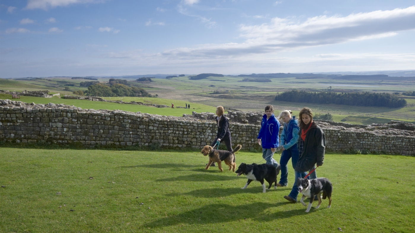 A group walking alongside Hadrian's Wall
