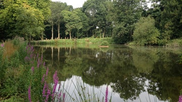The ice house pond in the grounds of Gunby Hall