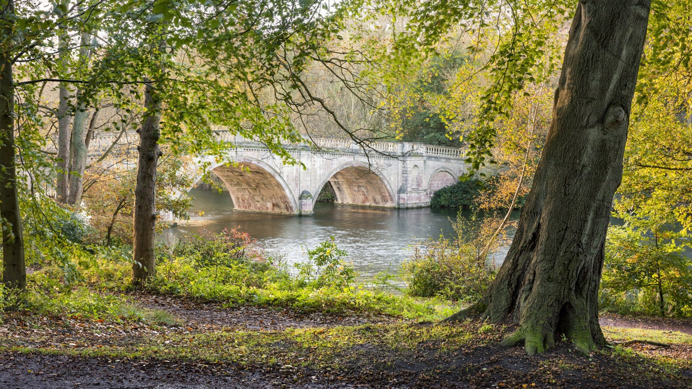 View of the bridge at Clumber Park, Nottinghamshire