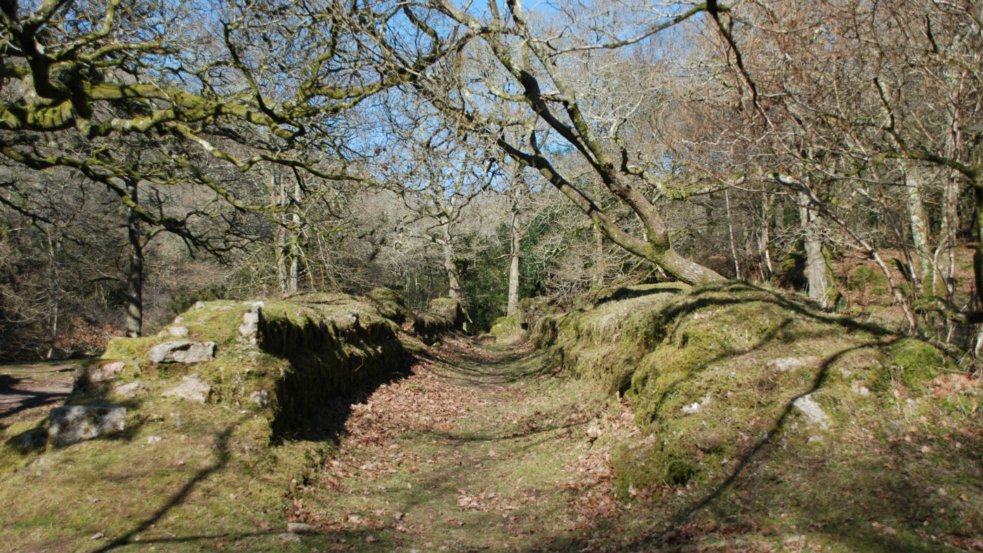 Remains of a tunnel brick kiln, Dewerstone Woods, Devon