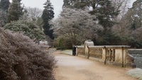 Frosty trees by the bridge at Sheffield Park Sussex