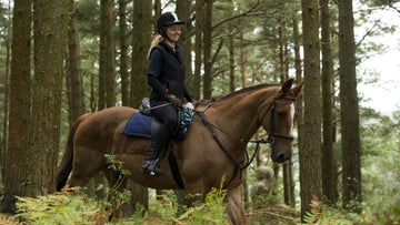 Horse and rider travelling through the woods