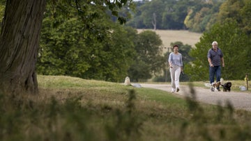 Two dog walkers in the parkland at Ickworth