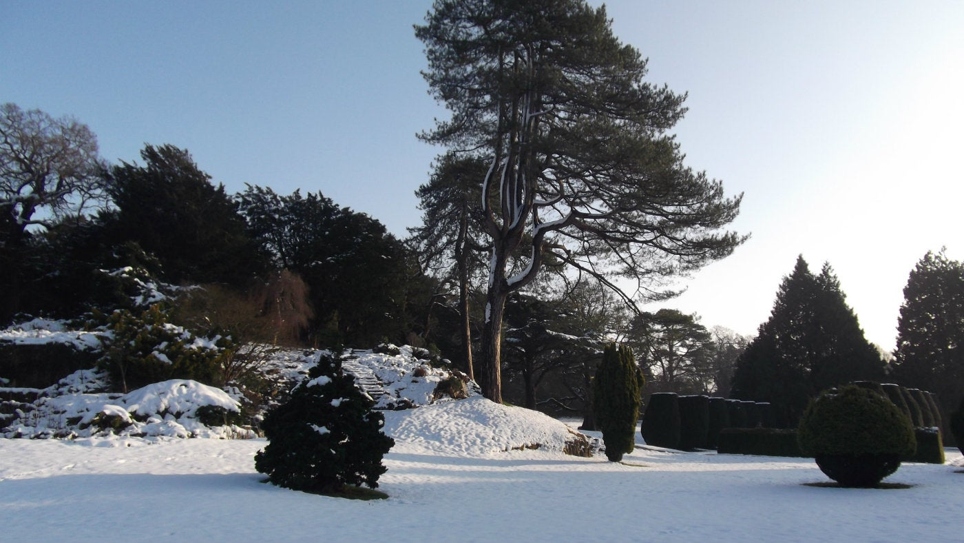 The rockery at Dyffryn Gardens in the snow