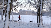 A woman walks her dog in the snow in front of a wintery Castle Coole