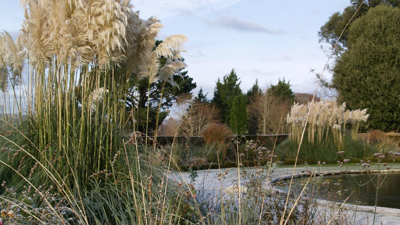 Our top winter gardens national trust for Winter garden