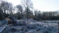Winter on Bookham Commons Surrey