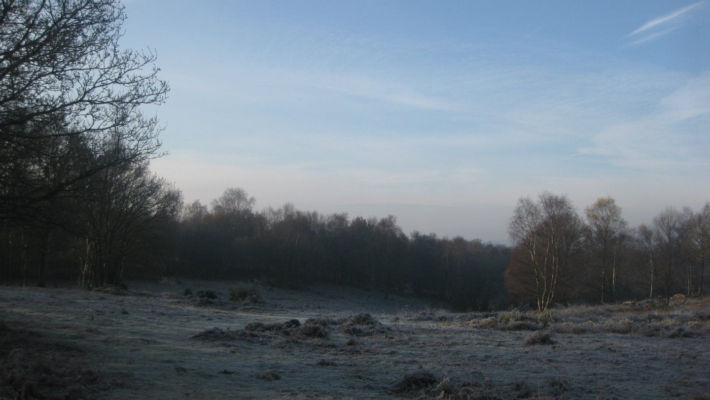 Winter view Headley Heath Surrey