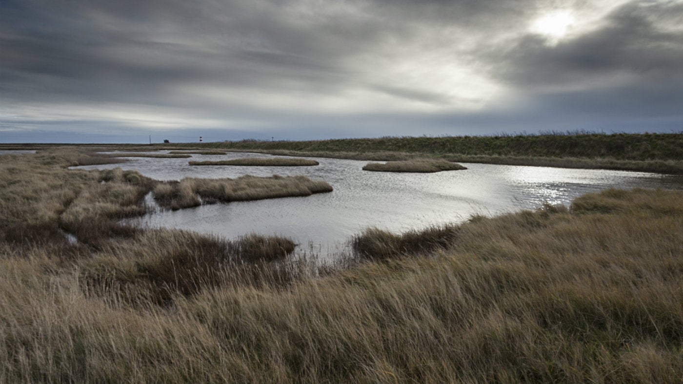 Lagoons on Kings Marsh Orford Ness