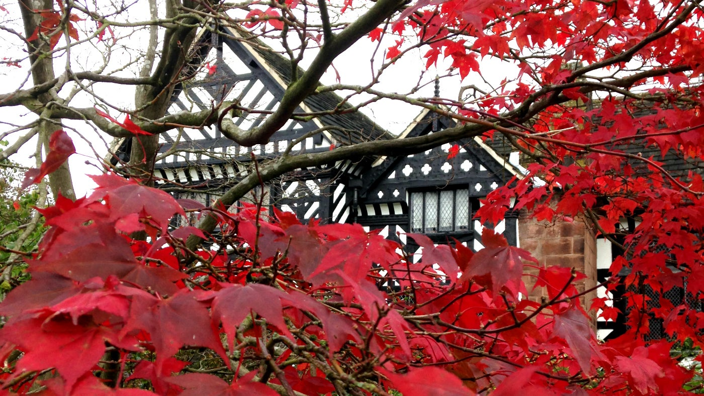 Speke Hall, viewed through autumn leaves