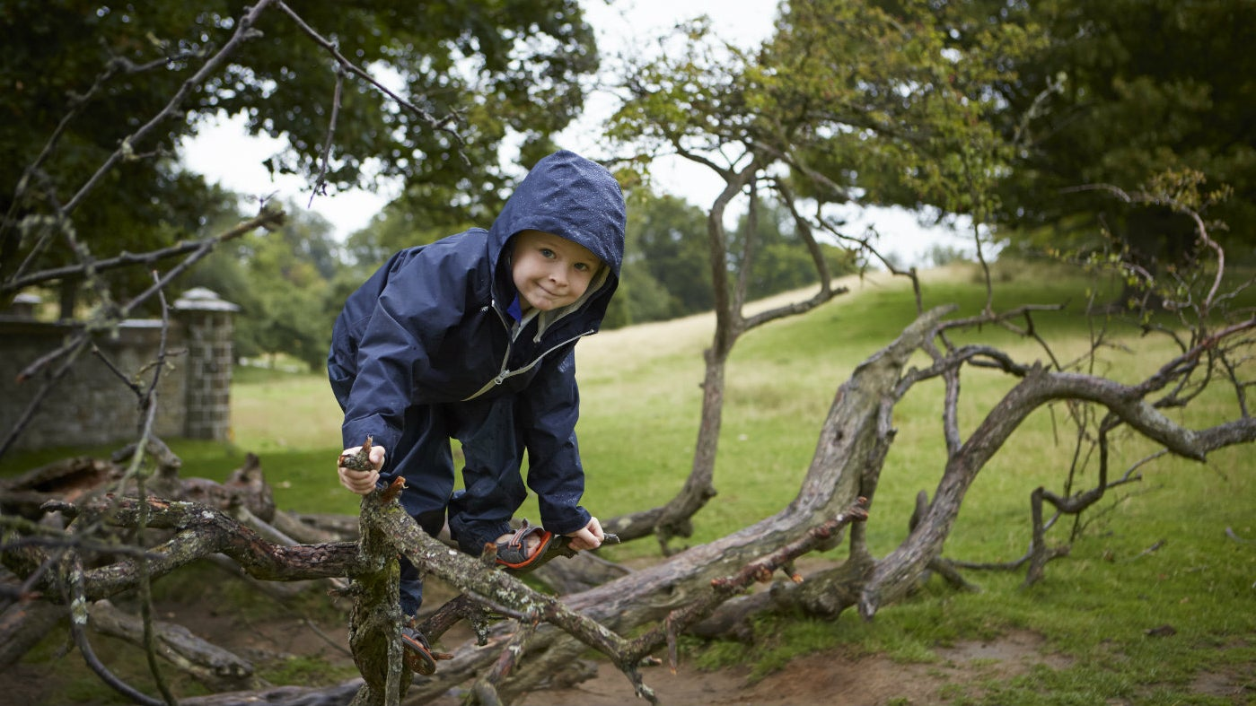 Families enjoy Knole Park all year round