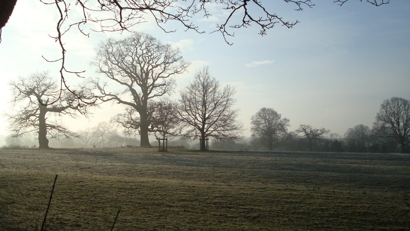 Looking over the fields on a frosty morning