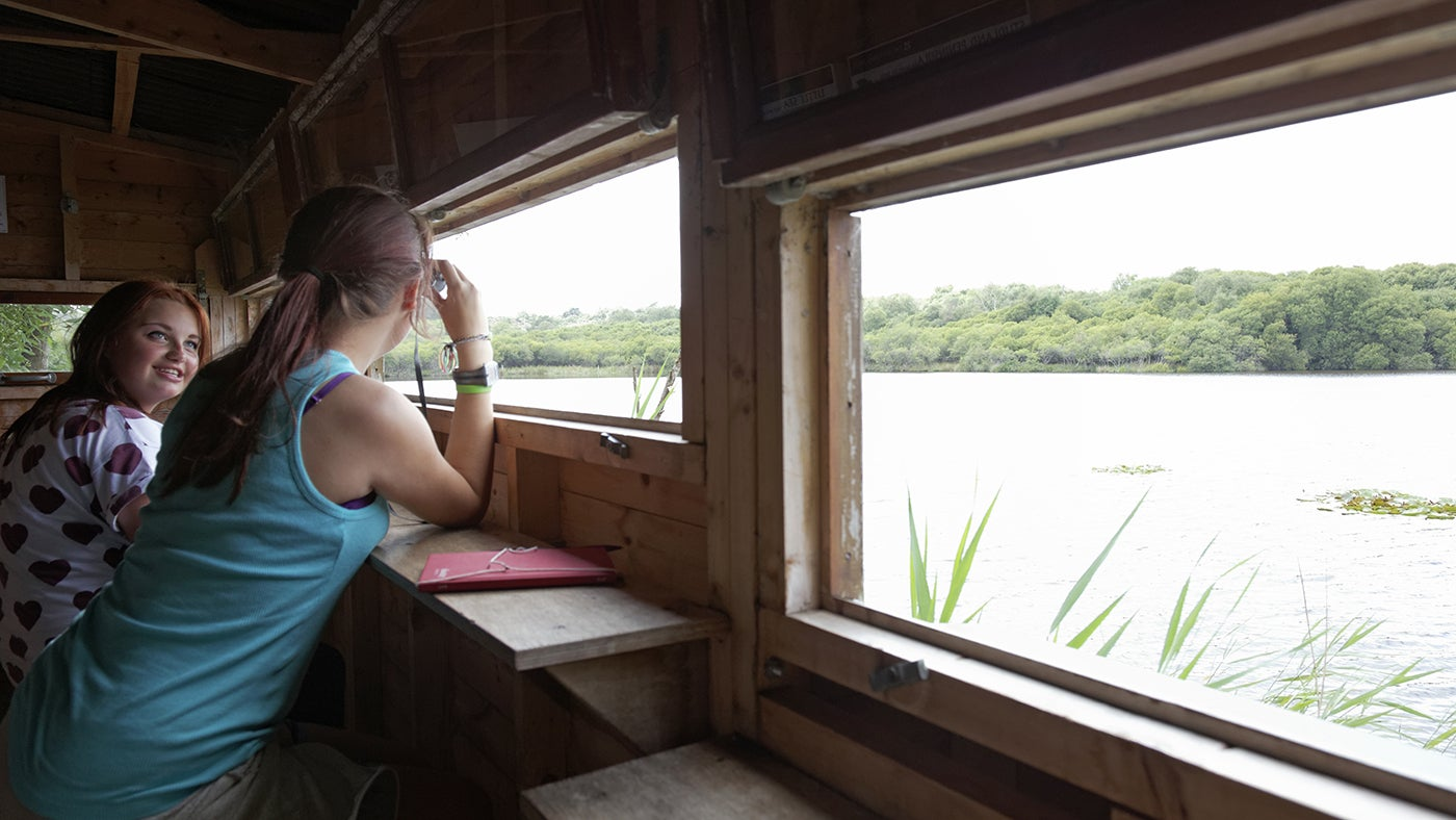 Visitors birdwatching at the Rees Cox Hide in Studland, Dorset