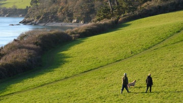 Two people and a dog walk in coastal meadows at Bosveal in Cornwall