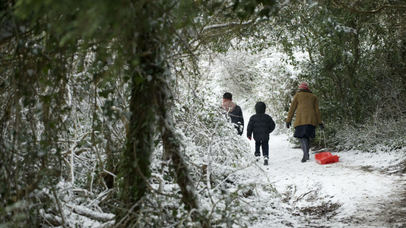 Families walking in the snow at Cragside, Northumberland