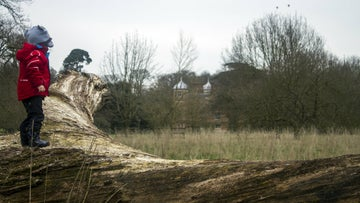 A boy standing on a tree trunk looking at Blickling Hall