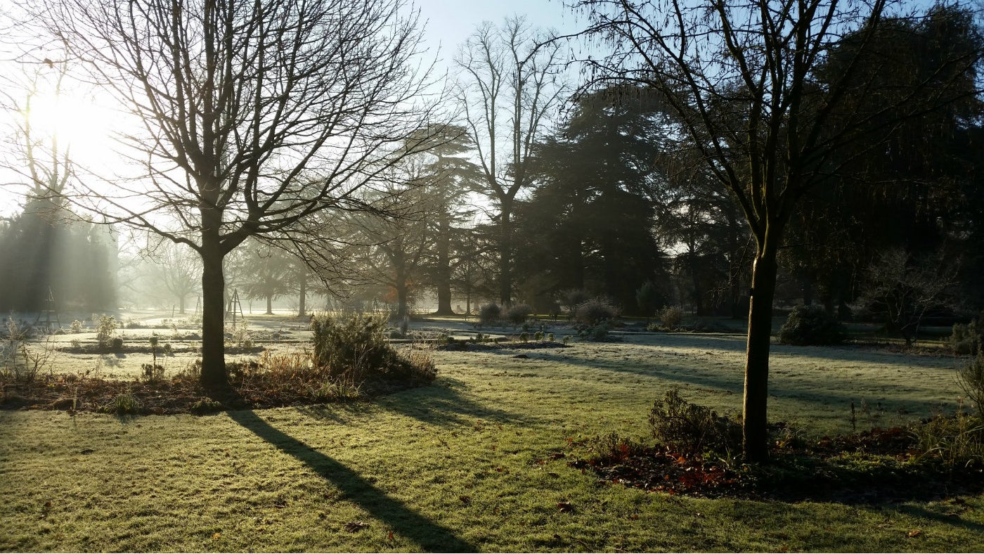 Crisp, sunny days are perfect for a winter walk in the gardens at Osterley
