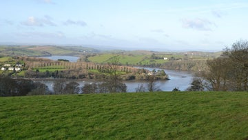 The view over the River Dart as seen from the Coombe Lane walk to Greenway