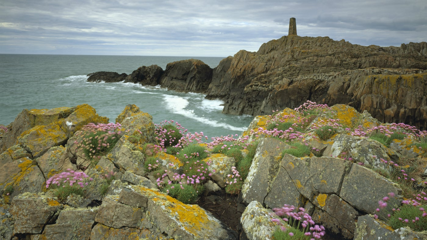 Pen Anglas on the Strumble Head coast