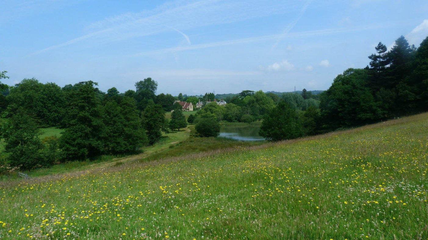 The view of river meadows at Woolbeding parkland