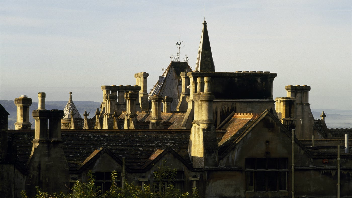 Tyntesfield roof tops