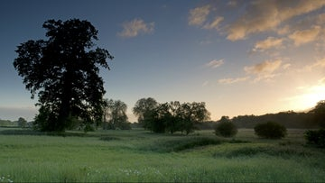 Sunrise on the Mottisfont estate, Hampshire