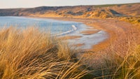 Sand dunes overlooking the beach at Freshwater West