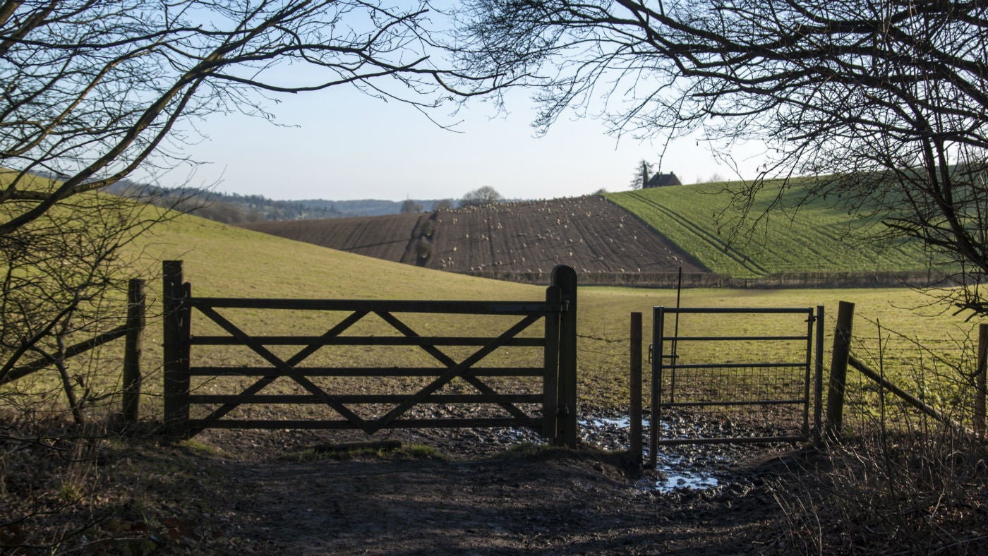 Peaceful walks galore at Hughenden