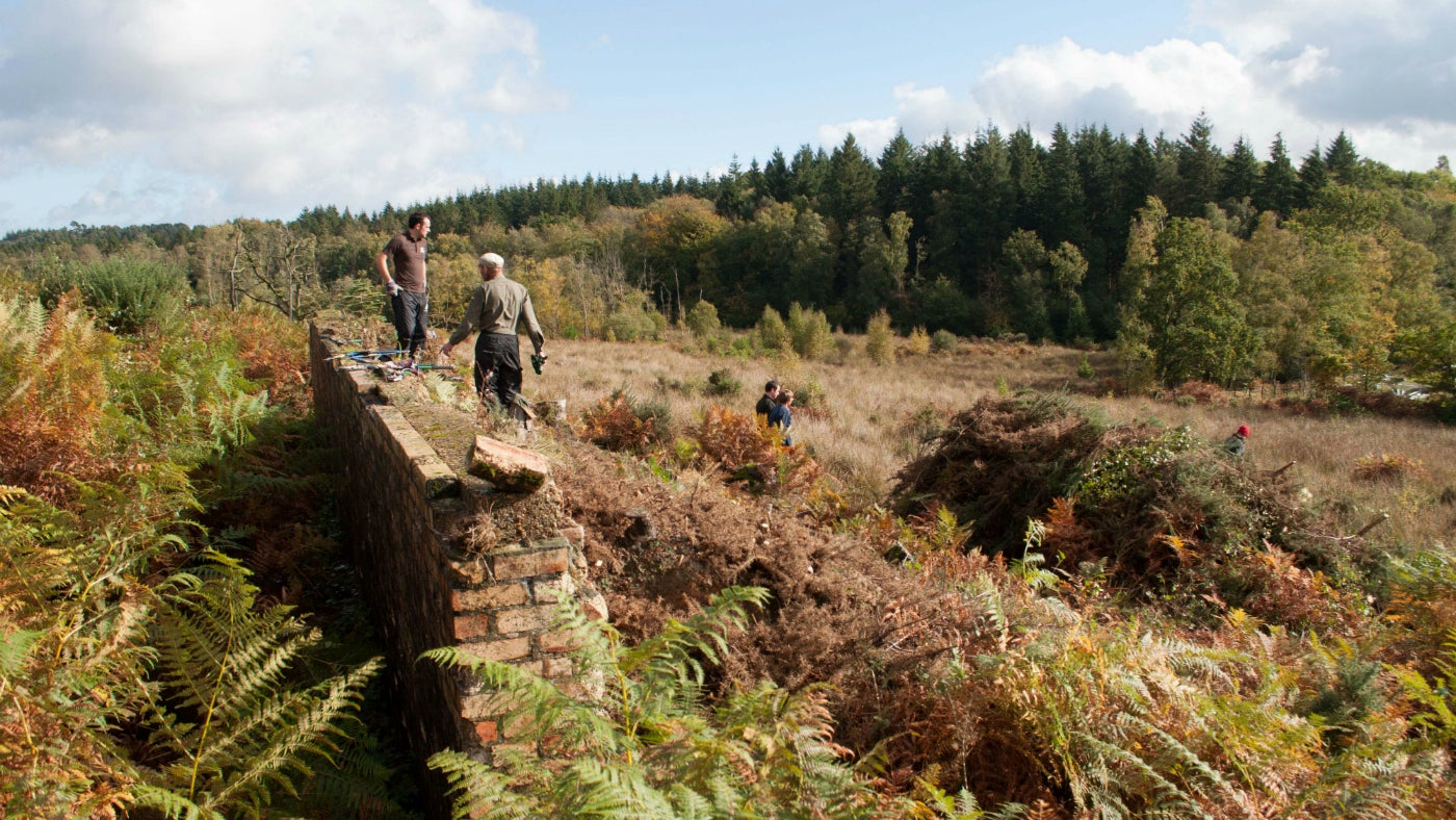 Two male volunteers stand by old brickwork amidst autumn bracken