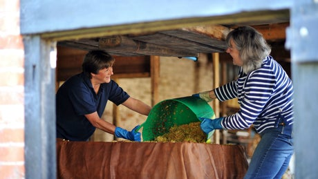 cider making killerton devon volunteers
