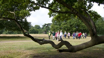 Veterans of another Knole Park walk return to the house