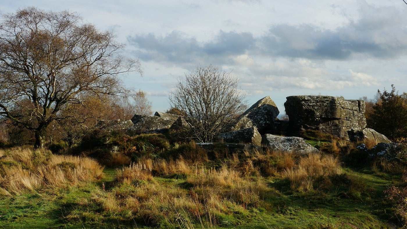 Brimham Rocks autumn colours, Nidderdale, North Yorkshire