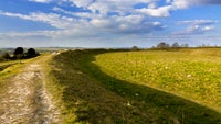 Figsbury Ring in sunshine