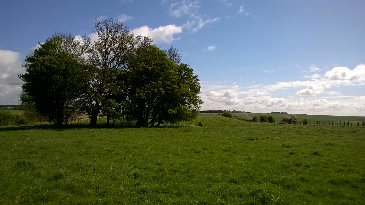Green field and prehistoric barrow