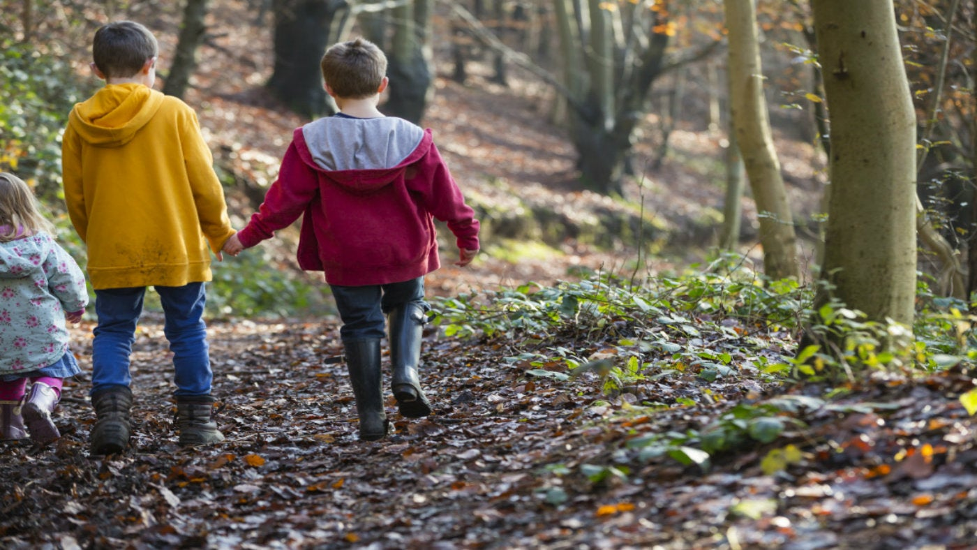 Autumn Walks By County National Trust