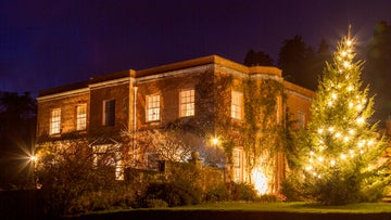 See Killerton, Devon lit up for Christmas