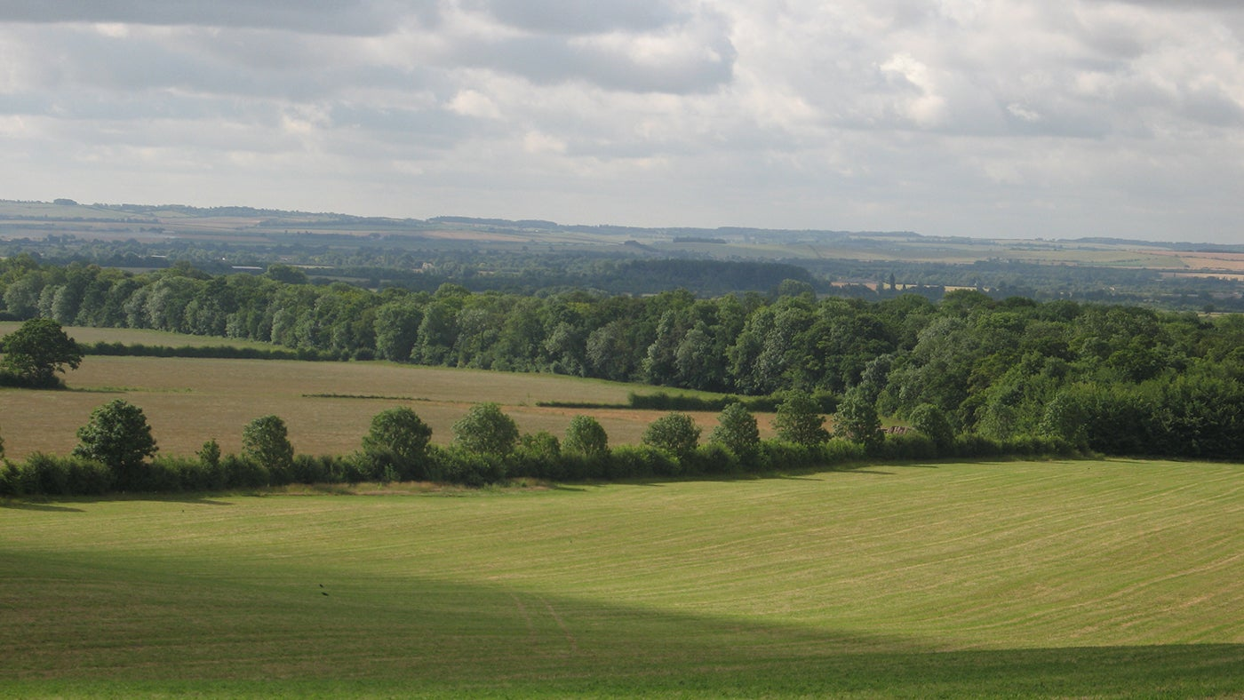 Arable fields at Wimpole