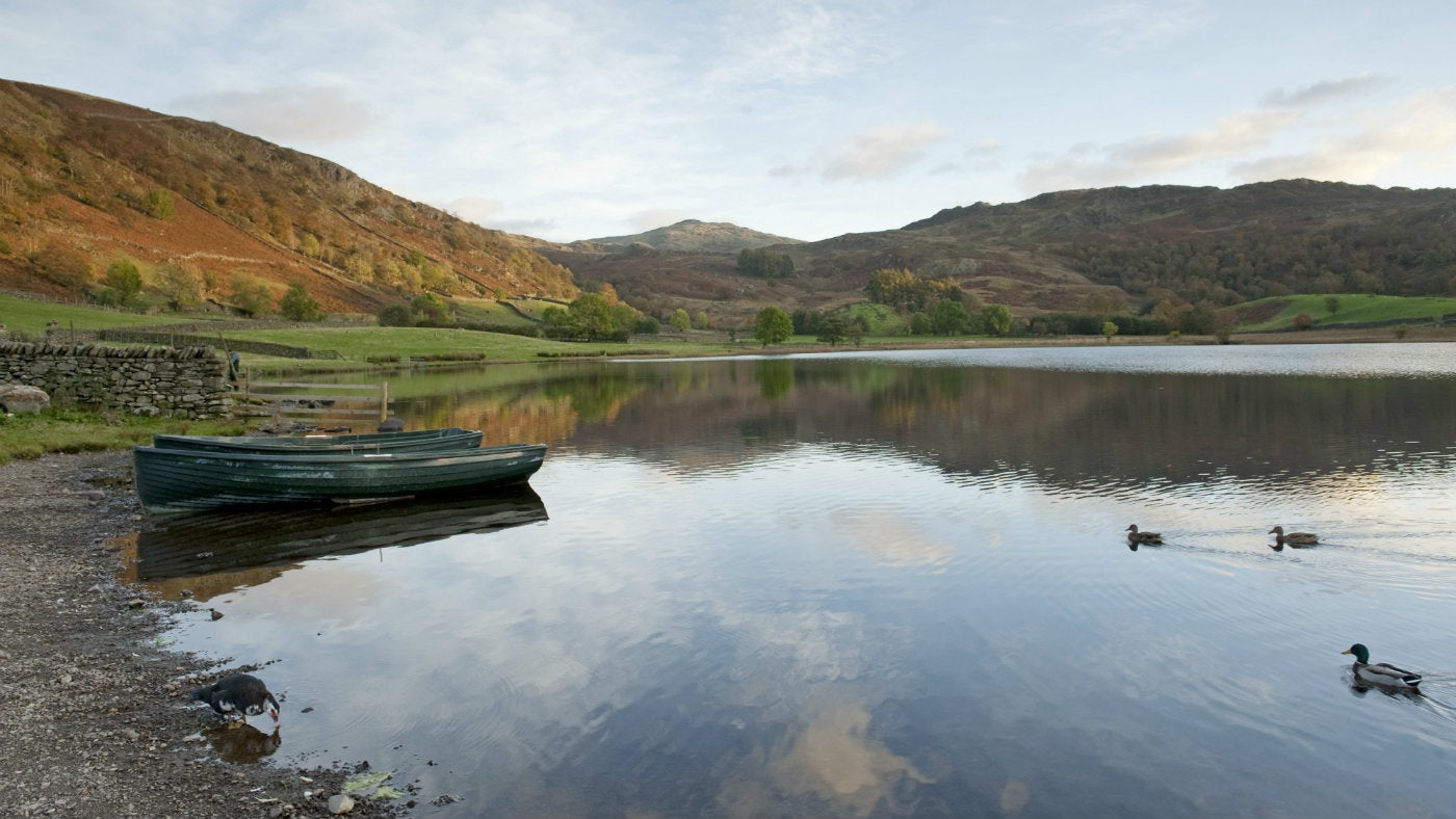 Boats and ducks on Watendlath Tarn, Lake District