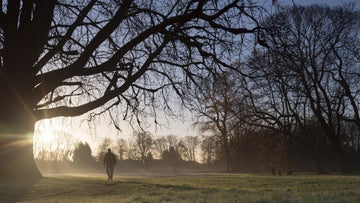 Man walking across winter parkland scene