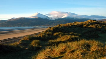 Snow capped Mournes from Murlough National Nature Reserve