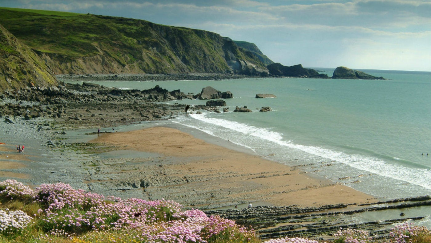 View looking over Welcombe Mouth beach