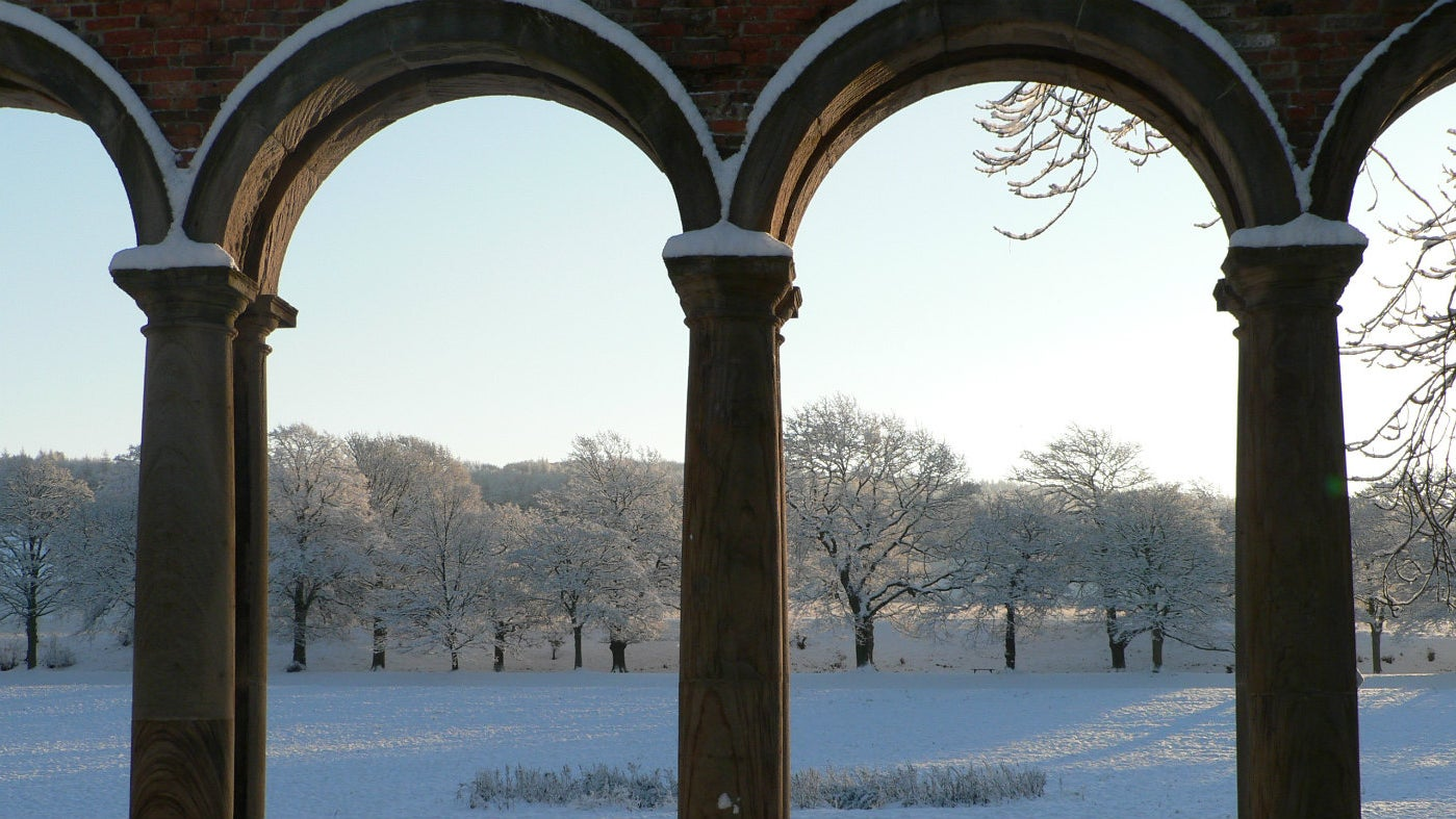 Snow-covered trees along the Avenue from the orangery