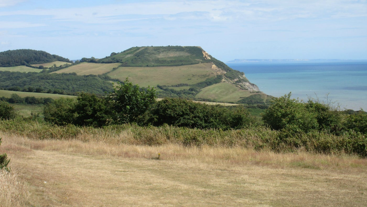 A view towards Golden Cap and the coast on Stonebarrow Permanent Orienteering Course